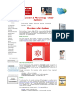 Physiology of the Muscular Sys