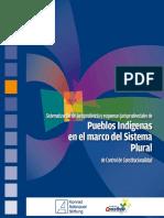 Attard (2014) - Sistematozación de Jurisprudencia de Pueblos Indígenas