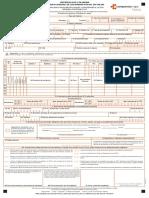 formularioUnicoAfiNovPOS.pdf