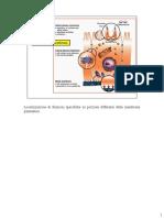 lez5_ScNatAmb_1516(membrfunz).pdf