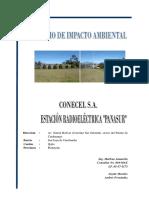 BORRADOR EIA PANASUR (30-07-2011).pdf