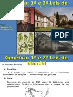 Mendel 1 e 2.ppt