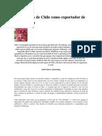 Los desafíos de Chile como exportador de uva de mesa