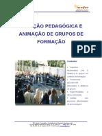 Animacao_de_grupos_de_formacao.pdf