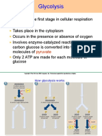 Aerobic Respiration Process.ppt