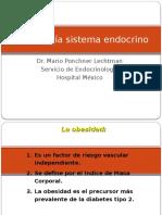 Semio Endocrino