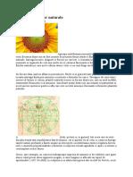 Armonia formelor naturale.pdf