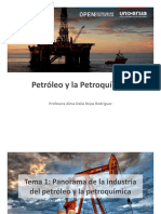 Panorama de La Industria Del Petroleo y La Petroquimica