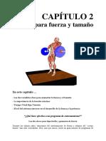 CAPÍTULO 2.pdf
