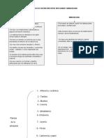 Parametros de Distinción Entre Artesania y Manualidad