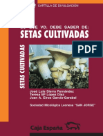 setas cutilvadas.pdf