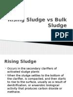 Rising Sludge vs Bulk Sludge.pptx