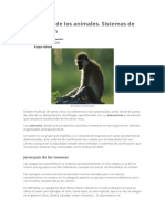 Taxonomía de Los Animales