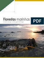 florestas_marinhas