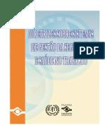 Diretrizes sobre Sistemas de Gestão.pdf