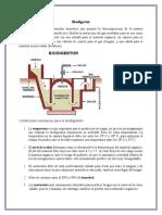 Biodgestor-fosas-enzimaticas