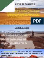 Disertacion Desierto de Atacama