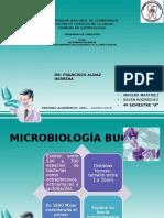 Microbiologia Oral Exposicion Cariologia