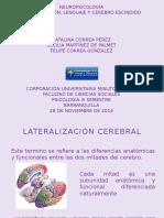 Lateralización, Lenguaje y Cerebro Escindido