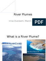 River plumes