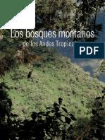 bosques-montanos