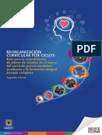 Libro Reorganizacion Curricular