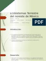 Ecosistemas Terrestre Del Noreste de México