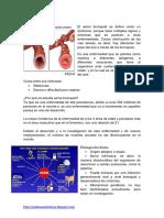 1. EPOC  Asma Bronquial