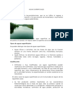 AGUAS SUPERFICIALES.docx