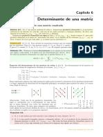 06 Determinante Matemáticas