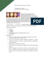 Experimento-2-informe-4-de-quimica