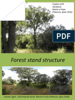Stand Structure