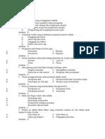 Struktur Dan Fungsi Tubuh Tumbuhan (Latihan Soal)