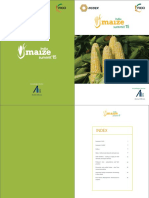 Background Paper India Maize Summit