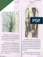 Medicinal plants.pdf