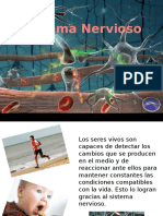 Sistemanervioso NEURO