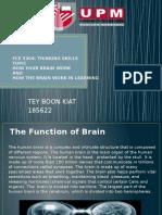 FCE 3204 Thinking skills