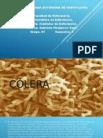Cólera - Cuidados de Enfermería