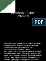 action potantial.pptx