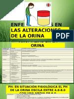 Enfermedades en La Orina