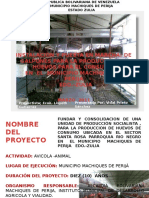 presentaciongallinasponedorasimdav-120722201728-phpapp02.pptx
