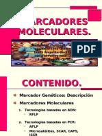marcador molecular