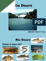Rio Douro.pptx