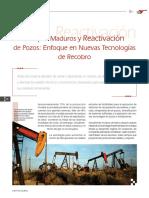 Campos Maduros Articulo