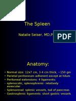 The Spleen1