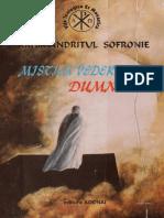 Sofronie Saharov - Mistica vederii lui Dumnezeu pdf.pdf