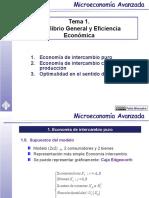 MICROECONOMÍA- EquilibrioGeneral