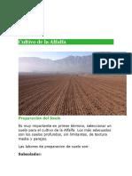 Cultivo de la Alfalfa  IMPRIMIR.docx