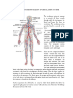 Anatomy and Physiology of Circulatory System