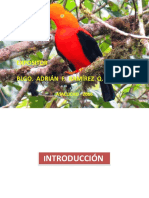 2_ Fauna Peruana Biodiversidad 2016